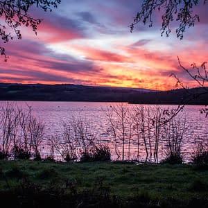 Sortie photo APC – Lac du Drennec – Janvier 2016