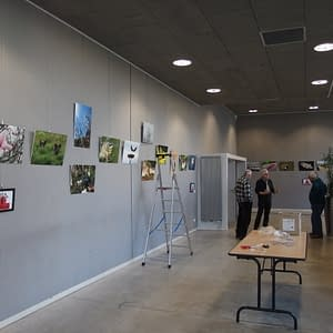 Exposition 2018 – Faune & Flore